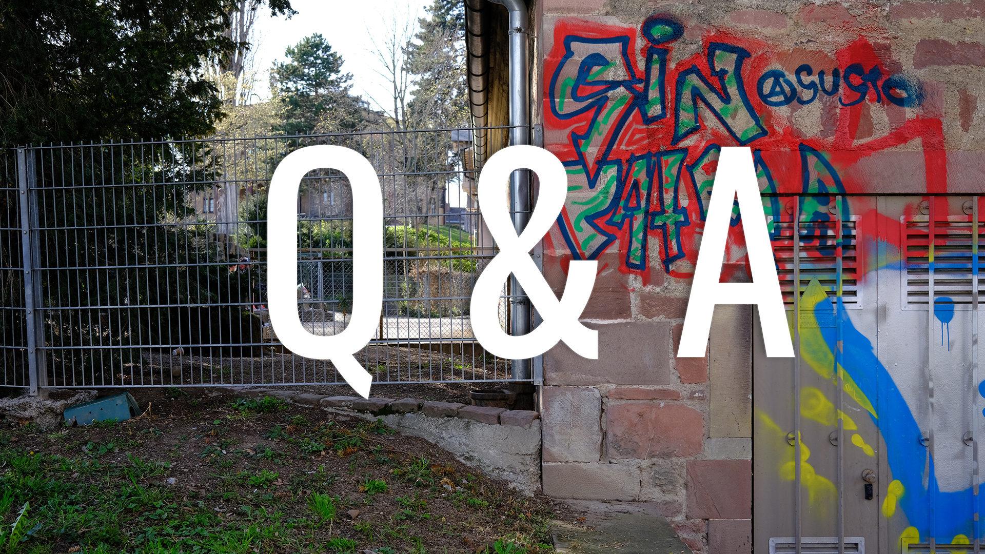 """Beitragsbild Fragen und Antworten zur Doku """"Rausch & Raus"""""""